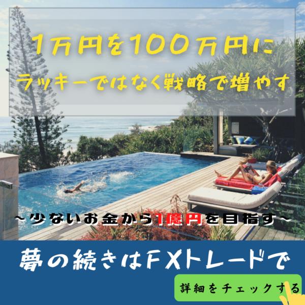 FX 100万円